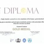 Diploma-EuroInvent-Iasi